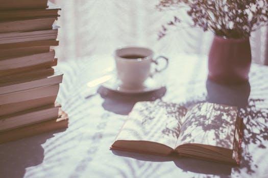 Книги и солнце